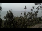 Ботанический сад Батуми - 2